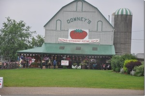 Downey's Farm, Canada Day Strawberry Festival