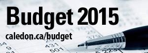 header-budget2015